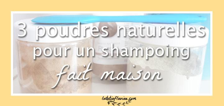 Utiliser un shampoing fait maison pour une alternative naturelle, saine et économique aux shampoings classiques. Découvrez les poudres que j'utilise sur lutetiaflaviae.com !