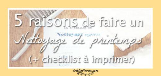 5 raisons de faire un nettoyage de printemps pour organiser sa maison ! Obtenez aussi ma checklist de nettoyage express sur lutetiaflaviae.com