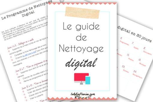 Le guide de nettoyage digital vous aidera à gérer vos appareils : ordinateurs, téléphones ou tablettes. Vous pourrez nettoyer vos e-mails, vos réseaux sociaux, vos documents, vos navigateurs etc. A découvrir sur lutetiaflaviae.com