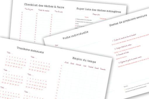 Le kit d'organisation maison inclut de nombreuses fiches pour la gestion des tâches ménagères mais aussi pour contrôler ses habitudes, suivre ses rendez-vous médicaux et plus encore ! Découvrez-les sur lutetiaflaviae.com