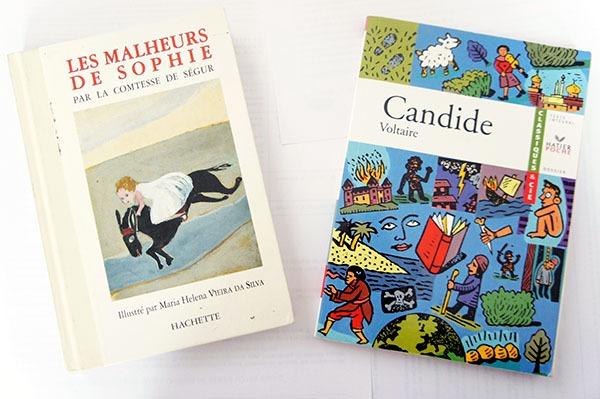 Les malheurs de Sophie de la comtesse de Ségur et Candide de Voltaire sont deux romans qui m'ont le plus marquée durant mon enfance. Cliquez sur lutetiaflaviae.com pour découvrir pourquoi !