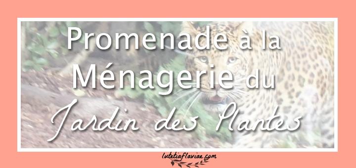 Ma promenade à la ménagerie du jardin des plantes (75005) pour découvrir des animaux rares. Découvrez mon avis sur ce zoo parisien sur lutetiaflaviae.com !