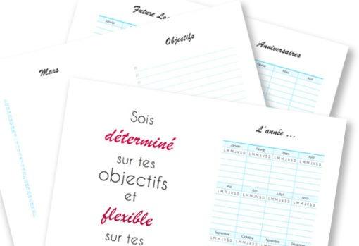 Aperçu du planner minimaliste offert en bonus pour l'achat de l'ebook S'organiser simplement en vente sur lutetiaflaviae.com