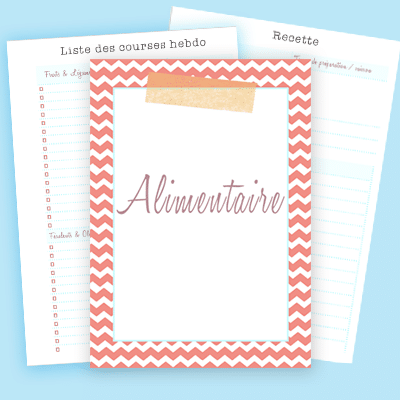 N'oubliez plus rien durant vos courses, ne manquez plus d'idées pour vos repas et composez vos menus avec vos recettes préférées grâce à ces imprimables ! Découvrez-les sur lutetiaflaviae.com