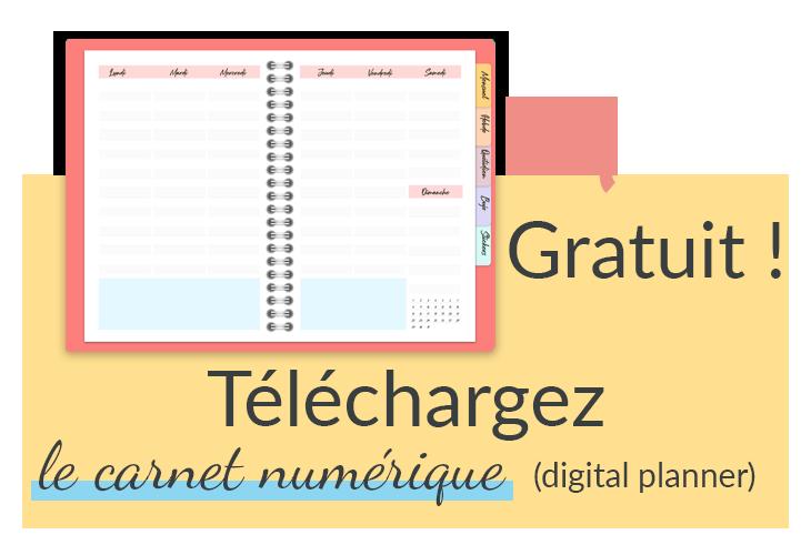Téléchargez le carnet numérique aussi appelé digital planner gratuit et en français dans la bibliothèque privée de slowcreativite.com pour simplifier votre organisation et améliorer votre gestion du temps